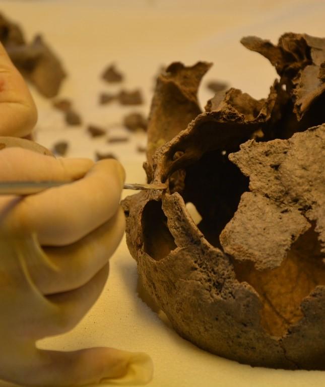 Trijntje: a legrégebb időkből fellelt emberi csontváz a mai Hollandia területén