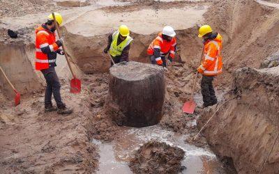 Von der Steinzeit bis zur Neuzeit: Ausgrabungen in Bocholt-Mussum, Industriepark XXL